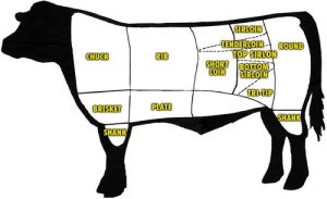 cow outline showing cuts of beef