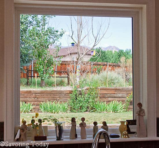 8-13 IMK The Window | Savoring Today