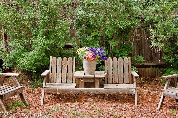 Flower Garden -- Purple Pentunias (1 of 1)