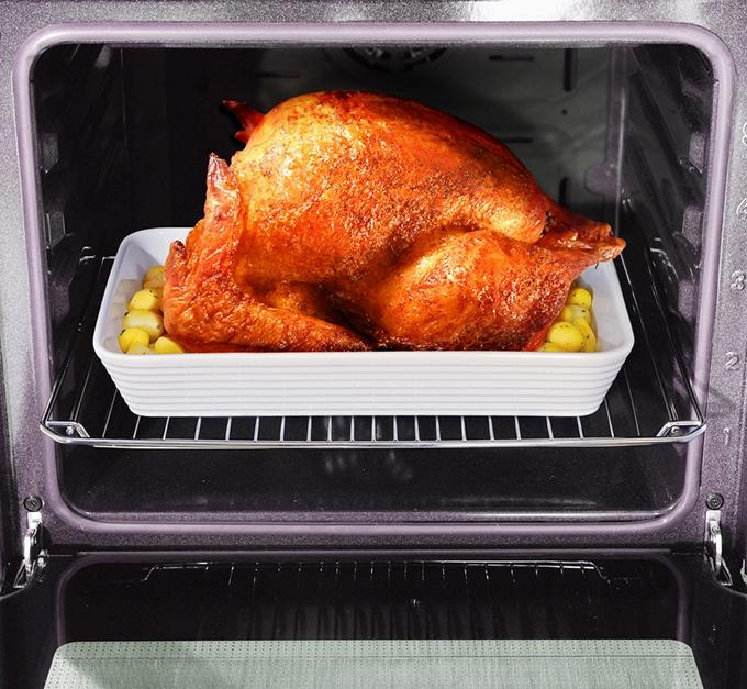 Roasted turkey in pan inside oven.